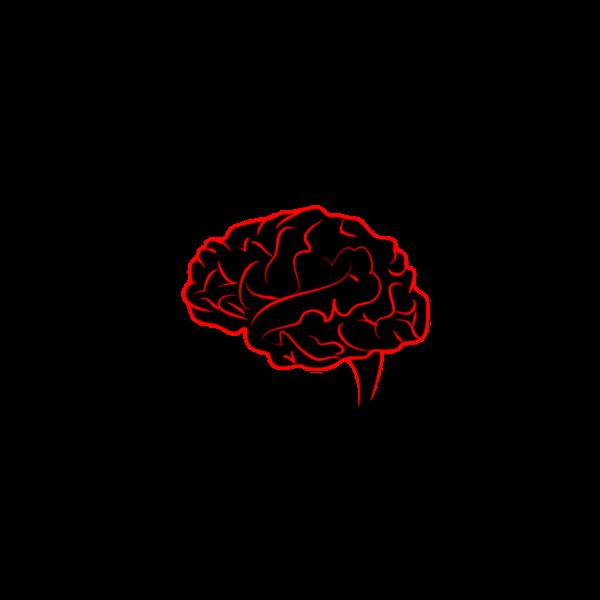 Psicologia Cognitiva Applicata | Amedraghi